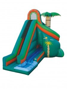 tropical water slide with pool